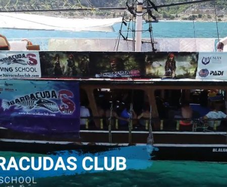 Barracudas Club Diving Club